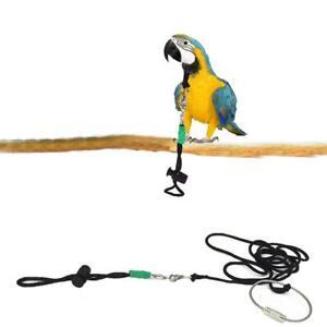 Outdoor-Pet-Parrot-Birds-Collar-Tie-Neck-Rope-Training-Harness-Leash-Adjustable