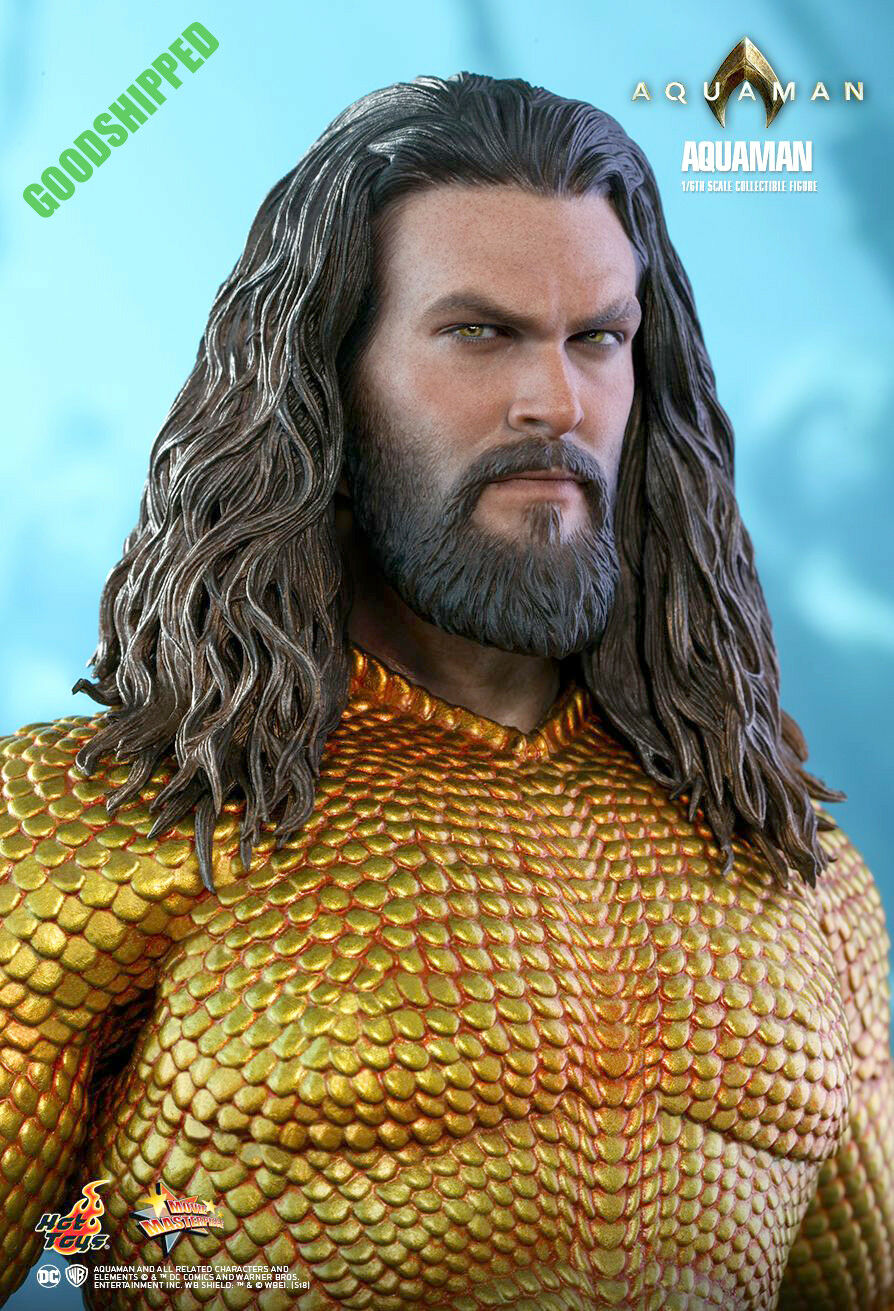 HOT TOYS DC COMICS Aquaman Arthur Curry Jason Momoa MMS518 1 6 NEUF