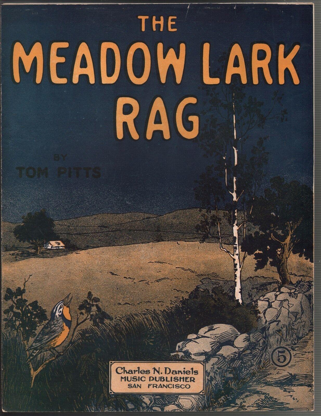 Meadow Lark Rag 1916 Large Format Sheet Music