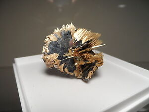 TOP-COLLECTION-RUTILE-SUR-HEMATITE