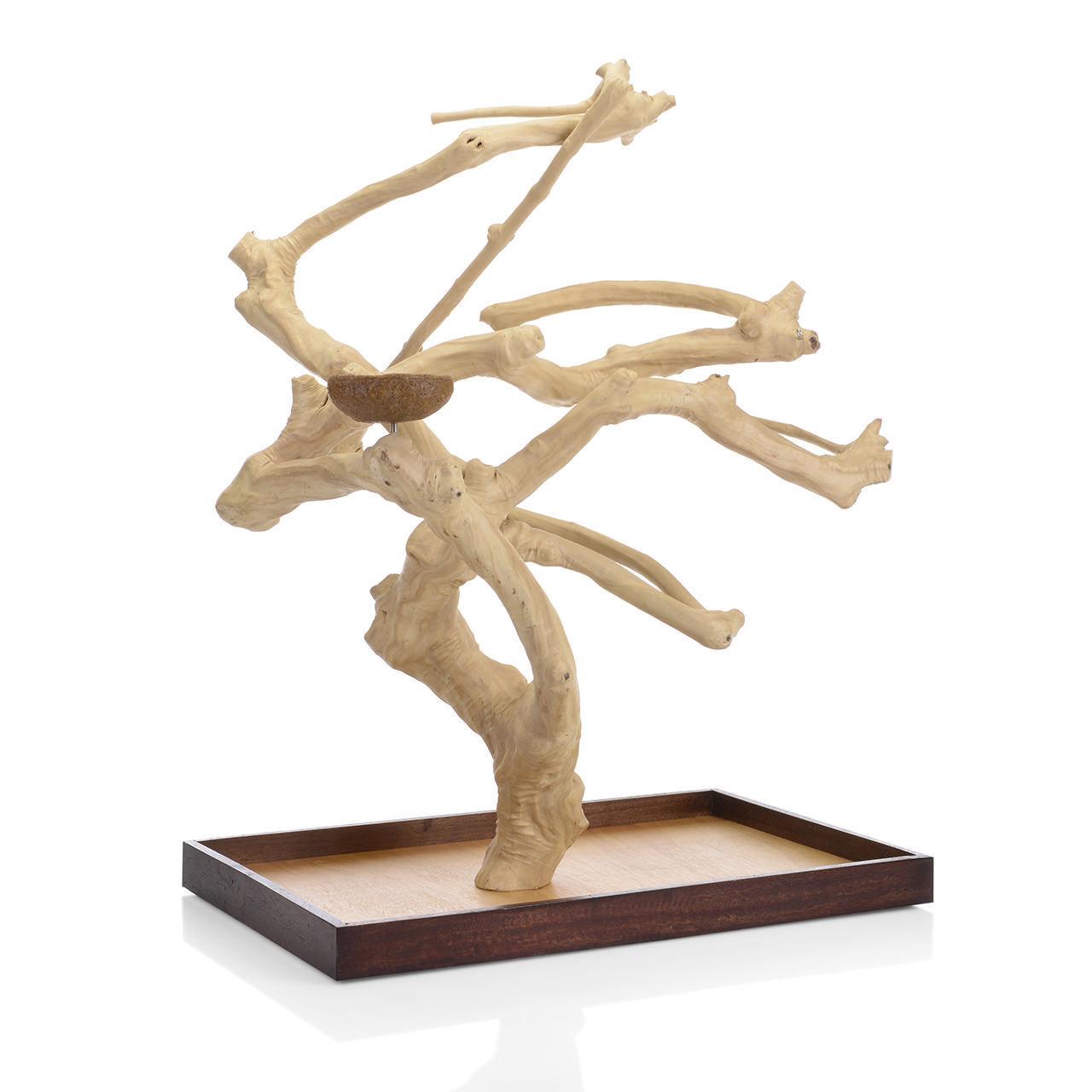 Java Tree Tavolo libero sede di caffè in legno XL per dimensione pappagalli come Aras cresta
