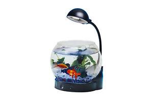 Mini acquario vetro con illuminazione a led boccia pesci con