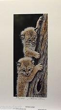 """Glenn OLSON """"Kitten Caper"""" LTD art print mint Certificate COA Lynx Bobcat"""