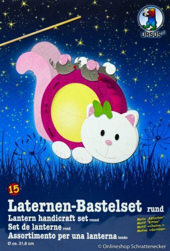 "Kätzchen//Katze/"" 15 Laternen-Bastelset /""Motiv Ursus Nr"