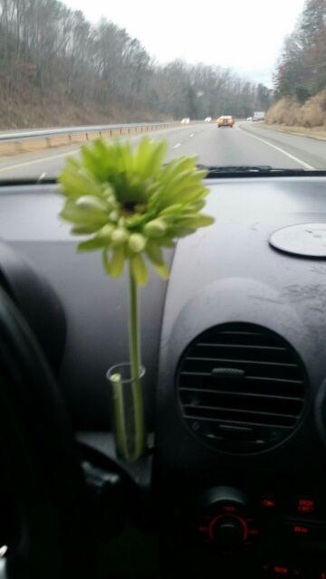 Orange Daisy Silk Flower 1 Volkswagen Original Clear Vase For Vw New