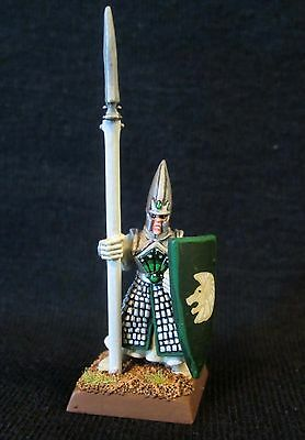D&D Miniature Beautiful Paint Work - Elven Spear Guard !!