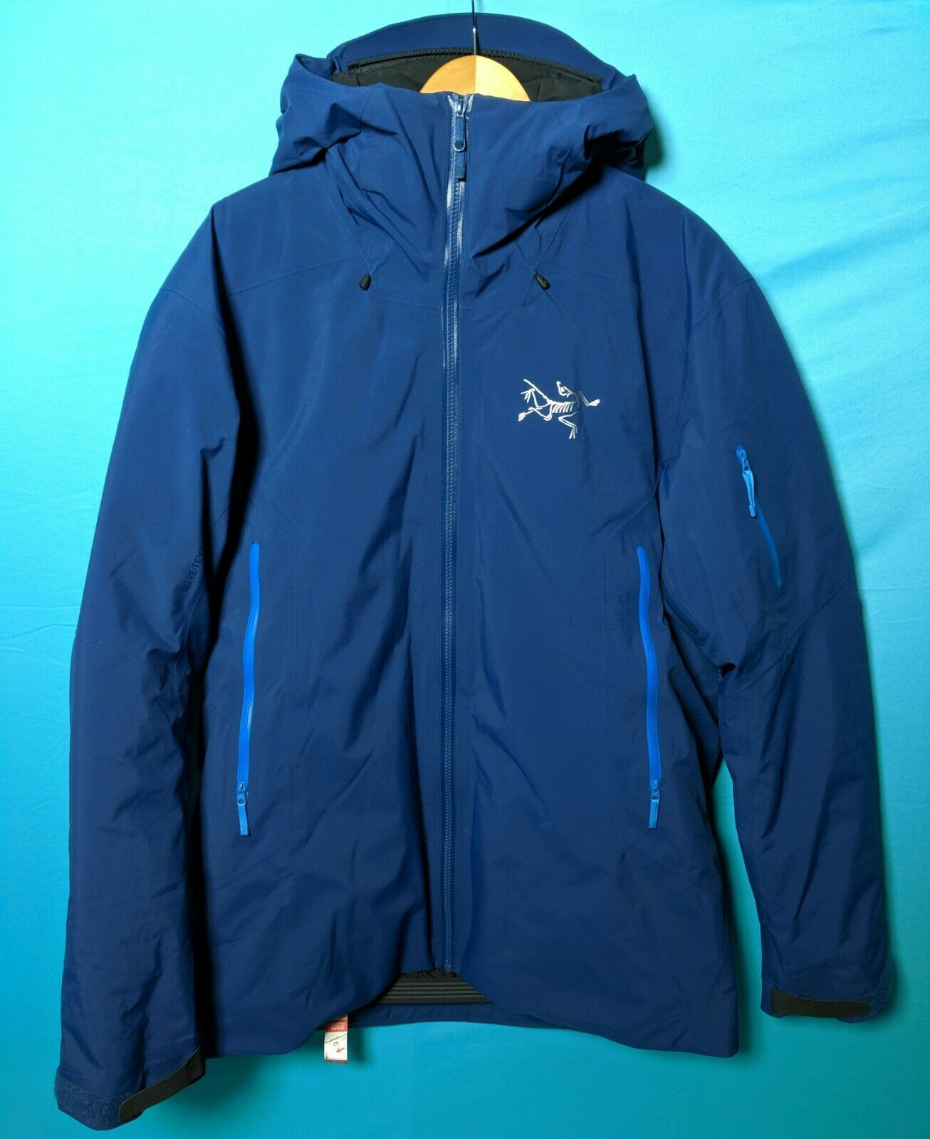 Arc'teryx Fissile Mens Large Triton Weatherproof Gore-Tex Down Insulated Jacket