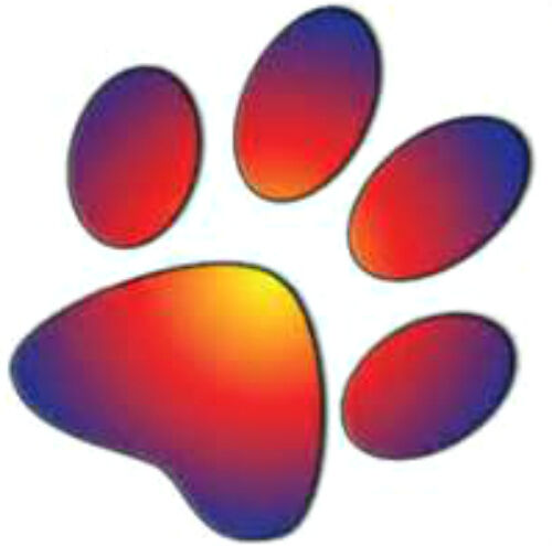 20 Water Slide Nail Art Decal Transfers Blue And Orange Yellow Paw