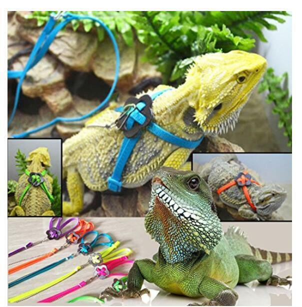 1pc Reptile Lizard Gecko Bearded Dragon Harness and Leash Adjustable