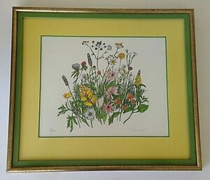 Framed-Limited-Edition-Print-039-039-Wildflowers-039-039