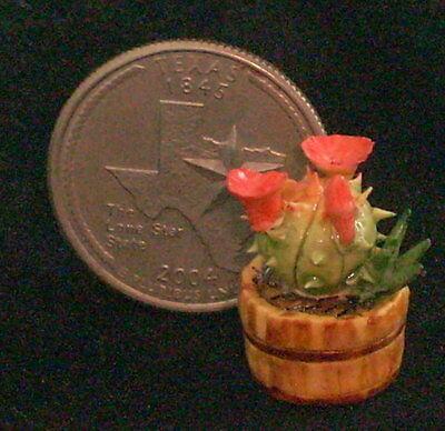 Dollhouse Miniature Potted Cactus 1:12 #H&H008 Garden Yard Desert Desert Plant