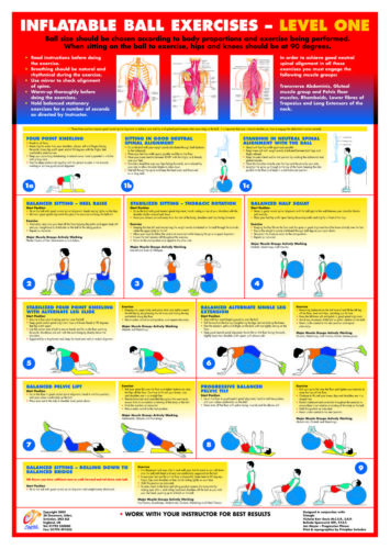 Gym Ball Exercise Posters Inflatable Swiss Ball Fitness Charts