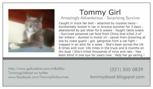 Tommy Girl Cruises collector cards with one entry for a crewed sailboat charter