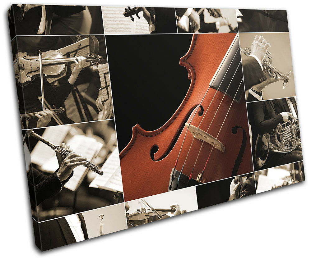Instruments Violin Montage Collage Musical SINGLE TOILE murale ART Photo Print