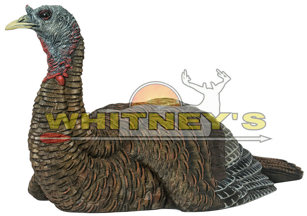 Avian X LCD Lookout Hen Premium Turkey Hunting Decoy