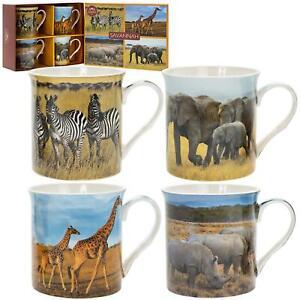 Set-4-Savannah-Africain-Elephant-Animaux-Sauvages-Fin-Chine-Tasses-Boite-Cadeau