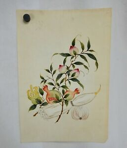 Chinese Peach, Pomegranate, Lotus Root Painting on Rice Paper - 81842