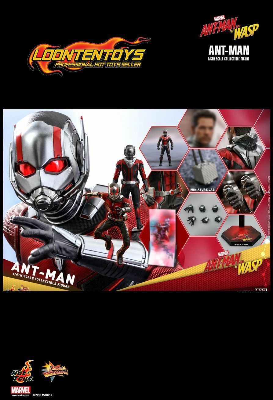 Hot Toys 1 6 MMS497 – Ant-Man and the Wasp Wasp Wasp – Ant-Man acdf1e
