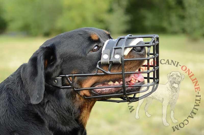 Confortevole museruola a cestello in metallo gommato per cani
