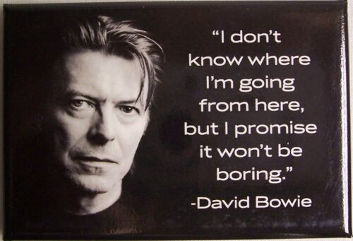 NAN David Bowie Quote Magnet