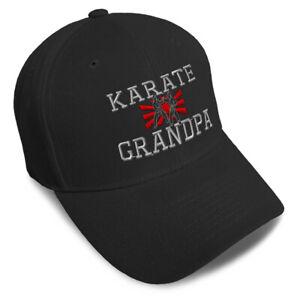 Dad Hats for Men Martial Arts Karate Grandpa Embroidery Women Baseball Caps