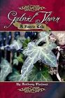 Gabriel Thorn: A Faerie Tale by Anthony Paolucci (Paperback, 2012)