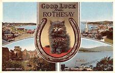 BR99783 rothesay castle bay cat  scotland