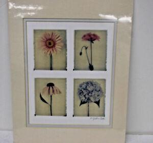 Poloroid-Transfer-Flowers-Quartet-Matted-Art-Print-Signed-by-Meg-Spielman-Peldo