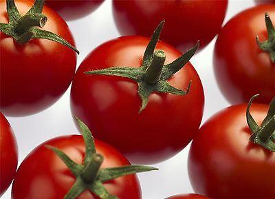 Organic Vegetable - Tomato Cheramy RZ F1 (72-122) GSPP - 5 Seeds