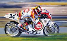 Kevin Schwantz Suzuki RGV 500GP Motorbike Motorcycle Racing Art Painting Print