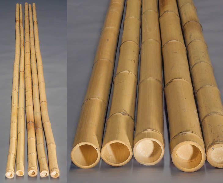 4er Set Bambusrohr gelb, Moso Bambus, gebleicht, Durch. 8- 10cm, Länge 600cm