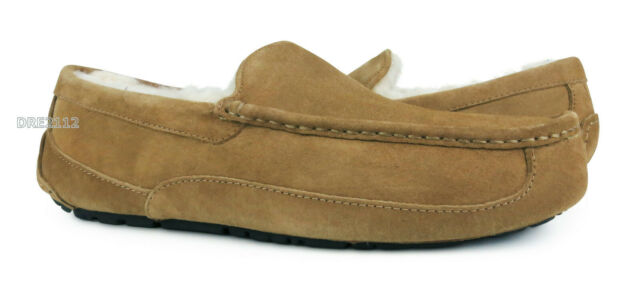 358eb60d47a UGG Ascot Chestnut Brown Suede Fur Slippers Mens Size 11 (Fits size 10)