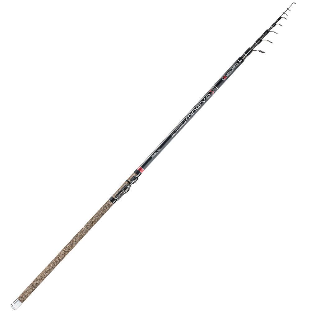 SELE MINERVA  Canna da pesca INGLESE TrossoA LAGO ALL ROUND