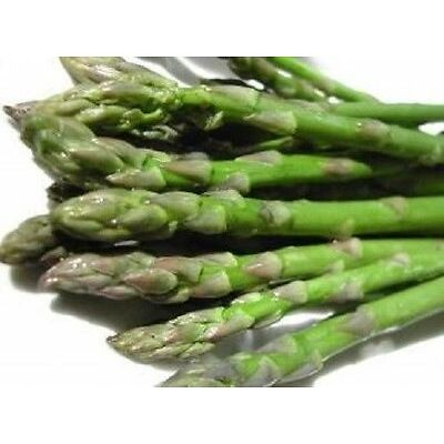 10 ASPARAGUS EXOTIC SEEDS (VEGETABLE SEEDS)