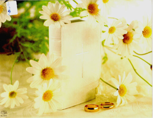 """Bible Bands//Rings 8.5/"""" x 11/""""  PACK OF 50 Yellow Daisy Wedding Bulletin White"""