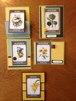 Stampin' Up Mixed Seed Pack Card Kit