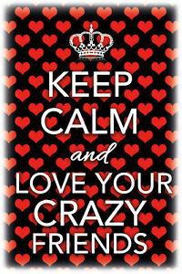 Keep-Calm-And-Love-Ton-Crazy-Friends-Panneau-Metallique-Etain-Signer-20-X-30-CM