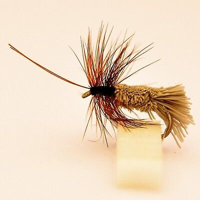 24 Caddis Sedge Dry  Fly fishing Trout & Grayling Flies by Dragonflies