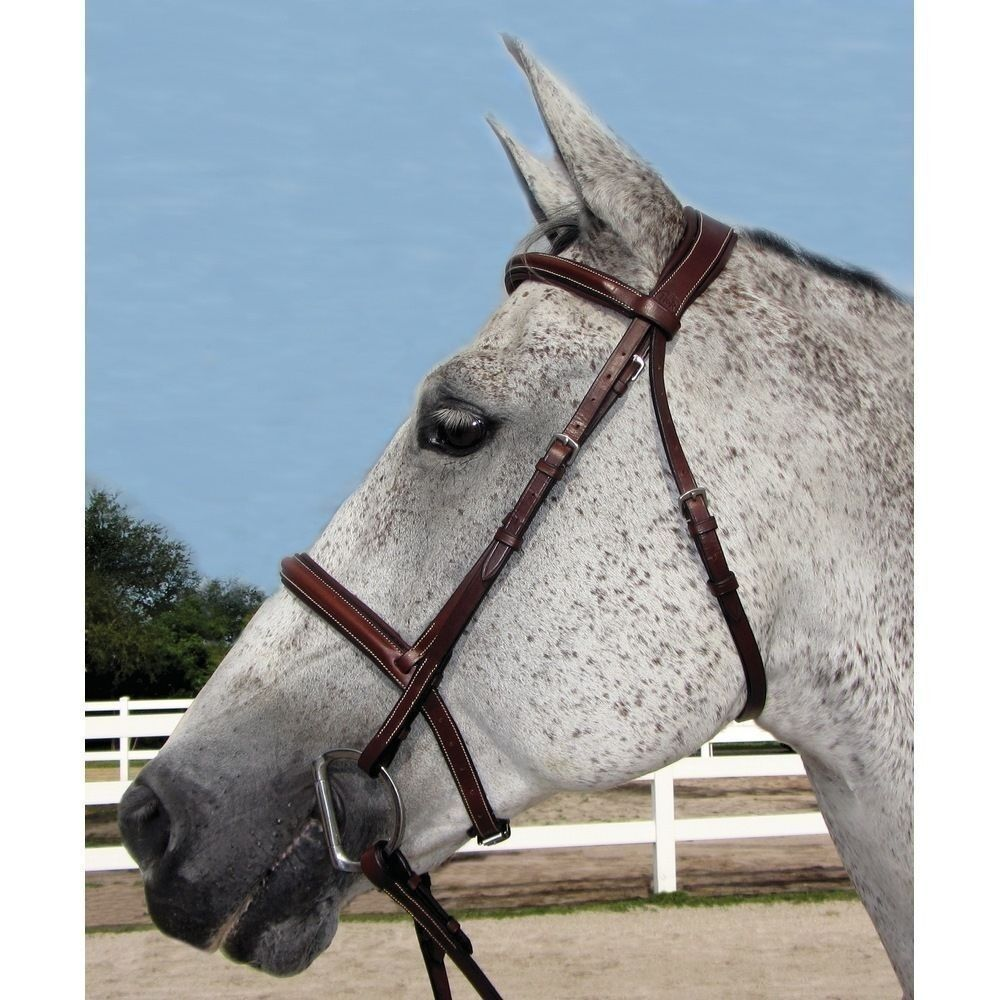 HDR Henri de Rivel Mono Crown Plain Padded Bridle - Australian Nut - All Größes