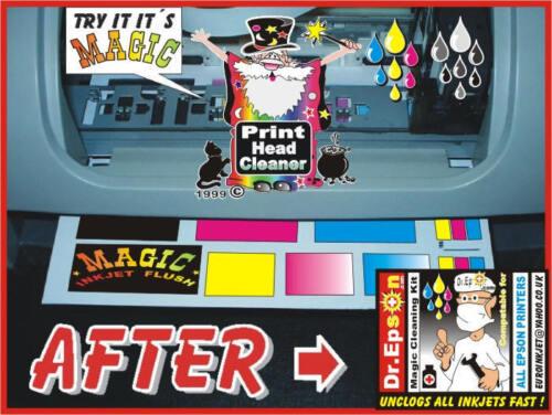 KIT di Pulizia Testina di stampa come risolvere disintasare Epson R800 1280 R1800 2200 CLEANER NUOVO