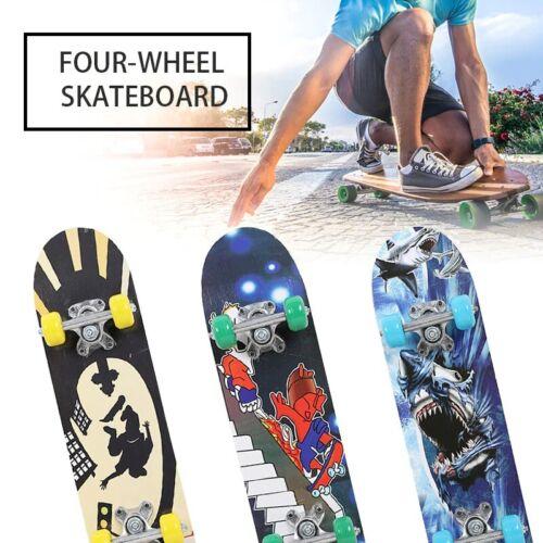 High Speed Fashionable Skateboard Double Rocker Professional Maple Longboard
