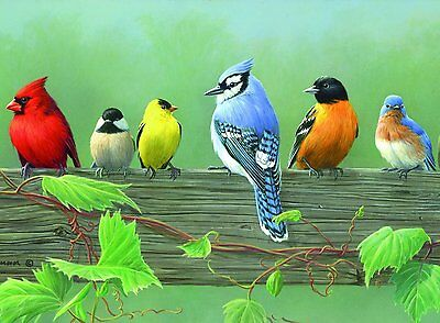 ADVANCED PAINT BY NUMBER SIX WILD AMERICAN USA BIRDS ON A RAIL PAINTING ACL5
