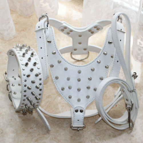 """Leather Dog Harness Dog Collar Lead SET Spikes Studded PitBull Chest Size 26-34/"""""""