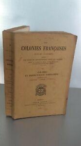 I Colonie Francesi La Riunione Mayotteles Comore T3 Quantin 1890 Spilla