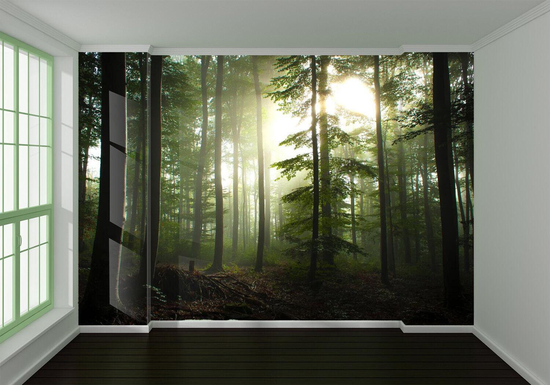 3D Morning Forest 7 Wall Paper Murals Wall Print Wall Wallpaper Mural AU Summer