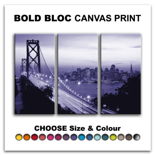 San Francisco CITY  Canvas Art Print Box Framed Picture Wall Hanging BBD