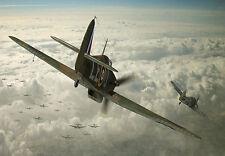 Huracán-la protección del rebaño-avión-Guerra arte cartel impresión A3
