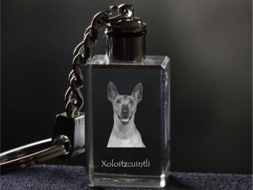 Keychain Dog Crystal Keyring Xoloitzcuintli Crystal Animals CA High Quality
