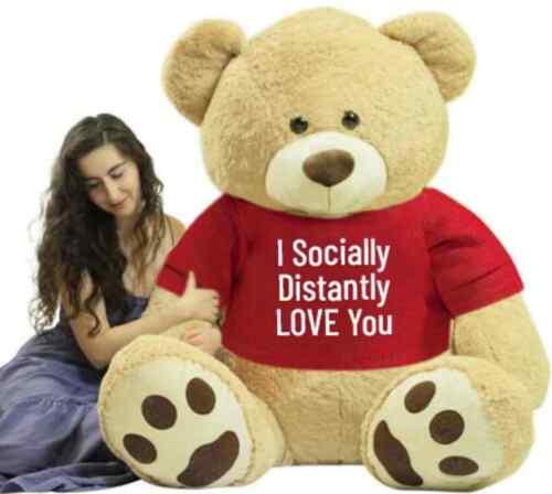 Big Plush® Giant 6 Ft Teddy Bear Soft Tshirt Says I Socially Distantly Love You