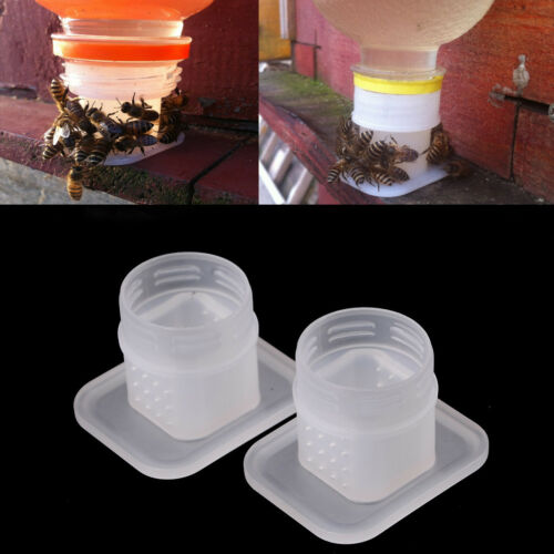 2x Bee Drinking Fountain Bee Queen Bee Water feederEquipment TDG$